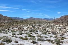 Borrego Springs, California (russ david) Tags: borrego springs california ca desert wash dry landscape april 2019 travel road