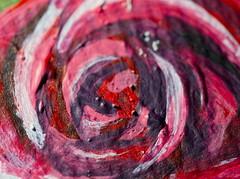 Center of the Rose (TaoStory) Tags: macro mondays macromondays painted