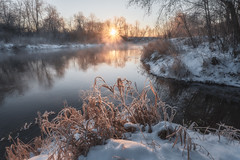 The birth of a new day (Andrei Baskevich) Tags: natural russia magic nature water frost beauty orange snow trees tree golden sky environment frosted yellow white sunrise winter ice scene dawn outdoor cold calmwater sunlight light bright sun frosty landscape reflection beautiful river moscowregion sunset blue scenic cool morning coast travel frozen
