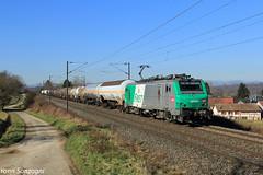 FRET et colombages (Lion de Belfort) Tags: train chemin de fer ligne 4 l4 alsace grand est retzwiller altkirch fret sncf prima alstom 27095 27000 427000 427095 citernes bb