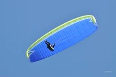 Libre comme l'air (Anne*°) Tags: annedhuart aile bleu blue ciel closeup cof096 diagonal fly harness lookingup motion mouvement normandie paraglider paragliding parapente parapentiste pilote psp sellette sky verslehaut voile vollibre wing cof096mari cof096dmnq cof096lens cof096patr cof096mark cof096plum cof096uki people