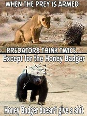 Except for the honey badger (gagbee18) Tags: animalmemes animals aww funny funnymemes honeybadger memes prey