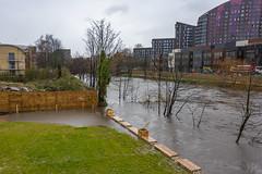 20200209_FebJanMixRdHyLdsTmpFloods_7128 (ShakeyDave) Tags: leeds winter d750 nikon david stevens shakeydave west yorkshire 2020 jan feb floods flood water river rain storm ciara
