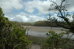 Mothecombe Beach South Devon 2019 (guyfogwill) Tags: guyfogwill guy fogwill devon plymouth april beach southhams plage mothecombe southwest 2019 coastal marine pl81lb holbeton southwestengland rivererme meadowsfootbeach southwestcoastalpath unitedkingdom flicker photo interesting absorbing engrossing fascinating riveting gripping compelling compulsive fleteestate nikond70s