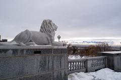 Lion at the Capitol (aaronrhawkins) Tags: lion sculpture statue capitol utah saltlakecity building valley pedestal overlook storm snow winter aaronhawkins