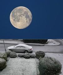 The Snow Arrived. Feb 2020 (Simon W. Photography) Tags: fullmoon moon moonlight snowmoon snow snowfall snowing winter2020 winter season sonyrx10iv sonyrx10m4 sonyuk sony sonydscrx10m4 sonyflickraward