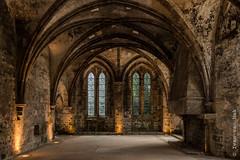 Abbaye de Beauport, Paimpol (Ivan van Nek) Tags: abbayedebeauport paimpol côtesdarmor france frankrijk frankreich 22 nikon nikond7200 sigma1770 ruïne abdij french bretagne breizh