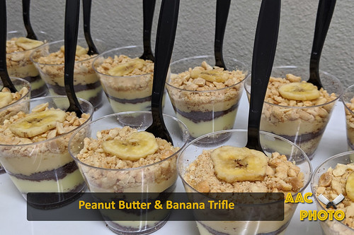 "PB Banana Trifle • <a style=""font-size:0.8em;"" href=""http://www.flickr.com/photos/159796538@N03/49516843733/"" target=""_blank"">View on Flickr</a>"