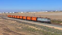 LCR por Chinchilla (L_B_A) Tags: renfe 269 269084 lcr chinchilla low cost rail