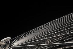 Rayonnement (Atreides59) Tags: lyon rhone rhône alpes rhônesalpes auvergne auvergnerhônealpes urban urbain fête lumière lumières fêtedeslumières light festival sculpture street ciel sky nuages clouds pentax k30 k 30 pentaxart atreides atreides59 cedriclafrance nuit night black white bw blackandwhite noir blanc nb noiretblanc monochrome