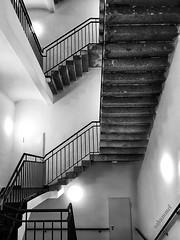 All Directions (Sockenhummel) Tags: treppe treppenhaus schwarzweis blackwhite monochrom einfarbig mono escaliers escaleros richtungswechsel stairs architektur architecture stairway staircase berlin moabit steps stufen