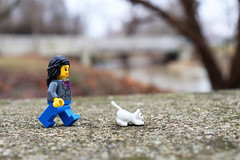 Sophie's cat Fifi was experiencing some cabin fever, so Sophie took her out for a little walk in the park (TheMagikMaster) Tags: lego legominifigures legophotography toyphotography cat pets legocat outforawalk park walkinthepark winter winterwalk cabinfever shakealeg 21020