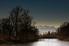 upstream (andre.kirtz) Tags: aargauischereussebene baumgruppe fluss baum winter schweiz flusslandschaft wasser morgenstunden berge morgenstimmung februar freiamt kalt aargau