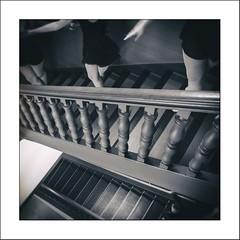 Les petits rats#5 (Panafloma) Tags: 2020 arras architecturebatimentsmonuments artois bâtiments fr famille france géographie hautsdefrance métiersetpersonnages nadine nadinebauduin natureetpaysages pasdecalais personnes techniquephoto végétaux conservatoire danseuse escalier hôtel monochrome province