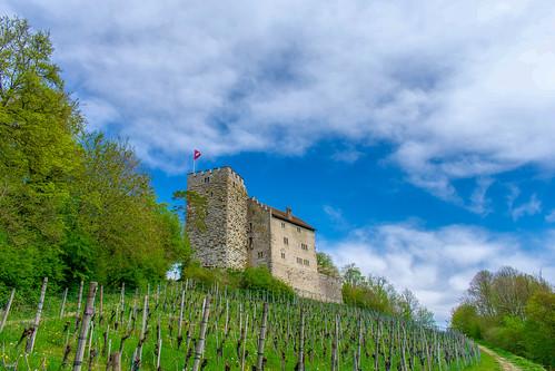 Château de Habsburg