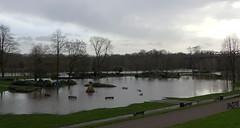 Miller Park, Preston,  flooded