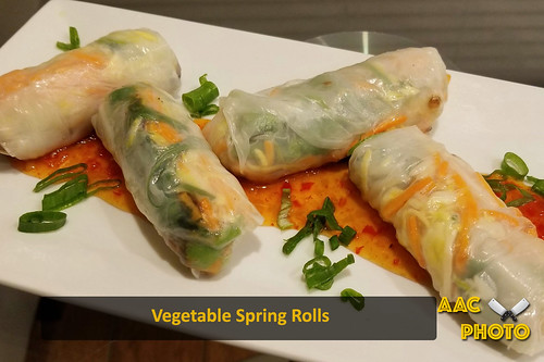 """Vegetable Spring Rolls • <a style=""""font-size:0.8em;"""" href=""""http://www.flickr.com/photos/159796538@N03/49517368261/"""" target=""""_blank"""">View on Flickr</a>"""