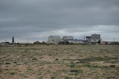 Photo of Dungeness Beach