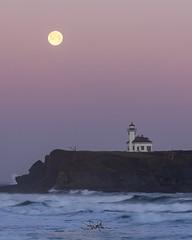 Cape Arago Lighthouse (TierraCosmos) Tags: fullmoon moon moonset lighthouse capearagolighthouse ocean waves seascape bluehour oregon oregoncoast morning twilight earthsshadow charleston coosbay beltofvenus