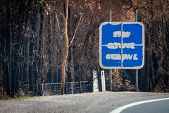 Signs of Fire. Stop, Revive, Survive (Doug Ingram) Tags: bushfires climatechange fires highway newsouthwales princeshighway rfs ruralfireservice shoalhaven signs southcoastnsw summer20192020 sussexinlet wandandian australia