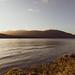 le lac de Te Hanau