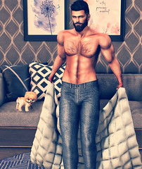 [ 📷 - 320 ] (insociable.sl) Tags: swank anastyle rezzroom amitieposes magnificient jean relax livingroom cute pomeranian dog puppy animal pet house home coverbed sexy topless beard boy male man edit sl secondlife