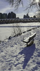 Happy bench Monday (zawaski -- Thank you for your visits & comments) Tags: beauty work love canada naturallight calgary lovepeace canon noflash 4hire serves zawaski©2020 silver ammolite rare alberta editing ammonite ambientlight leica