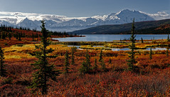 I Could Never Call the Places in the US and Canada a Bucket List (Denali National Park & Preserve) (thor_mark ) Tags: denali day10 denalinationalpark wonderlake lookingse colorefexpro nikond800e azimuth162 alaska2019 dxophotolab3edited wonderlaketrail nature landscape outside sunny nopeople blueskies alaskarange partlycloudy landscapescenery scenicsnature alaskayukonranges bluesskieswithclouds witharsenal imagecapturewitharsenal walktowonderlake mountains ridge evergreens mountainside ridgeline ridges evergreentrees mountmckinley mountainpeak denalinationalparkandpreserve denalinationalparkpreserve mountainsindistance dayhikingindenali mountainsoffindistance hillsideoftrees road trees lake snowcapped dirtroad tundra parkroad project365 freeversepoetry poetryandprose rollinghillsides mountbrooks mountkoven poemsused snowonfaroffmountainpeaks alaska unitedstates canvas portfolio