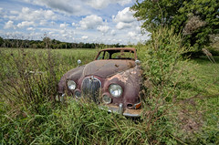 Jaguar (Dawn Loehr Photography) Tags: dawnloehrphotography dawnmarieloehr abandoned abandonment decay decayed ruraldecay car oldcar jaguar sky clouds