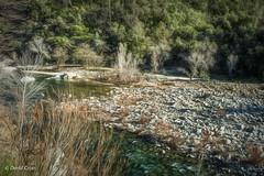 The Quiet Yuba (buffdawgus) Tags: california 35mm primelens bridgeport winter sierranevadafoothills canon5dmarkiii canonef35mmf2isusm lightroom6 yubariver topazstudio yubariversouthfork southyubariverstatepark nevadacounty landscape