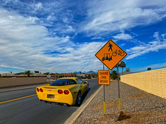 Share the Road (oybay©) Tags: sedona suncitywest macro midwaycorvetteshow midway corvette show phoenix chevrolet chevroletcorvette vette newcorvette cardealer earnhardtchevrolet earnhardt chandler arizona car automobile red redcar multiple many z06 corvettez06 coolcar veryred cool envy envious cloned clone vehicle tire sport auto racing outdoor sports rim barrettjackson auction scottsdale 1955 convertible vin001 onemillioneighthundredthousand venetianread blackandwhite black white martinautomuseum scrippspier scripps pier lajolla la jolla sandiego
