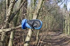 IMGP7729 (hlavaty85) Tags: glove lost ztracená rukavička