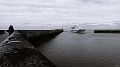 Newhaven - Dieppe (Un jour en France) Tags: dieppe newhaven ferry port ciel cielpaysage far normandie canoneos6dmarkii canonef1635mmf28liiusm noiretblanc noiretblancfrance monochrome black