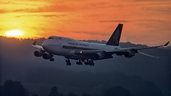 9V-SMR Boeing 747-412 Singpaore Airlines landing during sunrise at Zurich Airport (BOSCHH) Tags: boeing 747 747400 queen skies 747412 zurich airport kloten runway 28 sunrise dawn dusk sunset hills mountains 9vsmr singpaore airlines landing during general military civil aviation aviationdaily aviationgeek canon fighter fighterjet flight fly air force airline airplane helicopter jet photo photography photos pilot plane planespotting sky spotting cockpit