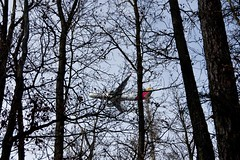 IMGP7769 (hlavaty85) Tags: iberia airlines aircraft letadlo