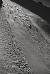 titlus202006 (murburger01) Tags: titlus switzerland fun sunsnow moonscape cold ski snowboard engleberg 1020mm