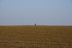IMGP7749 (hlavaty85) Tags: osoba person postava pole field