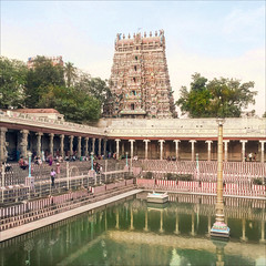 Le bassin sacré du temple de Meenakshi en 2014 (Madurai, Inde)