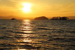 Sunset (Teruhide Tomori) Tags: lakebiwa shiga kohoku landscape winter lake japan japon water afternoon evening nature 琵琶湖 湖北 日本 関西 滋賀県 自然 風景 夕景 sky sunset tree chikubuisland 竹生島 夕陽 冬