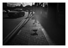 FILM - Crow(d) block (fishyfish_arcade) Tags: 35mm analogphotography bw blackwhite blackandwhite canonsureshotmax delta400 filmphotography filmisnotdead istillshootfilm monochrome analogcamera compactcamera film ilford mono streetphotography