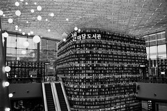 Library (Thanathip Moolvong) Tags: epson v800 leica m4 kentmere 400 bw film hc110 developer library seoul korea