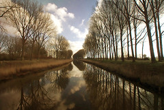 """""""Love the trees until their leaves fall off, then encourage them to try again next year.""""  ― Chad Sugg (genevieve van doren) Tags: damme canal channel trees arbres reflection reflets"""