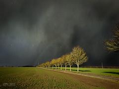 Sabine geht, die Sonne kommt! (!Koss) Tags: sturm storm orkan ciara sabine rainbow sun contrast ice