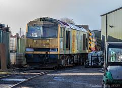 Photo of 60086_E5A1202