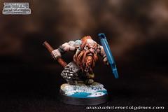 Dwarven Warrior-5