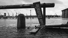 Sabine auf dem Fischmarkt (Maike B) Tags: hamburg fischmarkt monochrome sturm storm sturmflut elbe hafen harbour flut sturmtief sabine