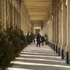 Galerie de Montpensier * (Titole) Tags: palaisroyal paris nicolefaton titole squareformat shadow friendlychallenges