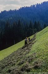 Kirchberg in Tirol, augustus 1985 (Okke Groot - in tekst en beeld) Tags: landbouw kirchberg boeren äusserekleinseite mensen tirol oostenrijk