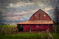 OK Corral (TicKavich) Tags: barn horse corral landscape clouds textures fence farm rural gate sky pine tree pasture antique rustic