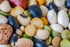 "DSC_1075-1.   ~  ""MACRO MONDAYS"" ~ and ""VEGETABLES"" ~ ""2/17/20"" ~ (Travlin/Cindy16) Tags: macromondays macro mondays vegetables beans 21720 red black white green"